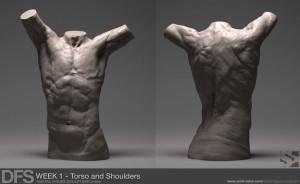 week1 torso zbrush